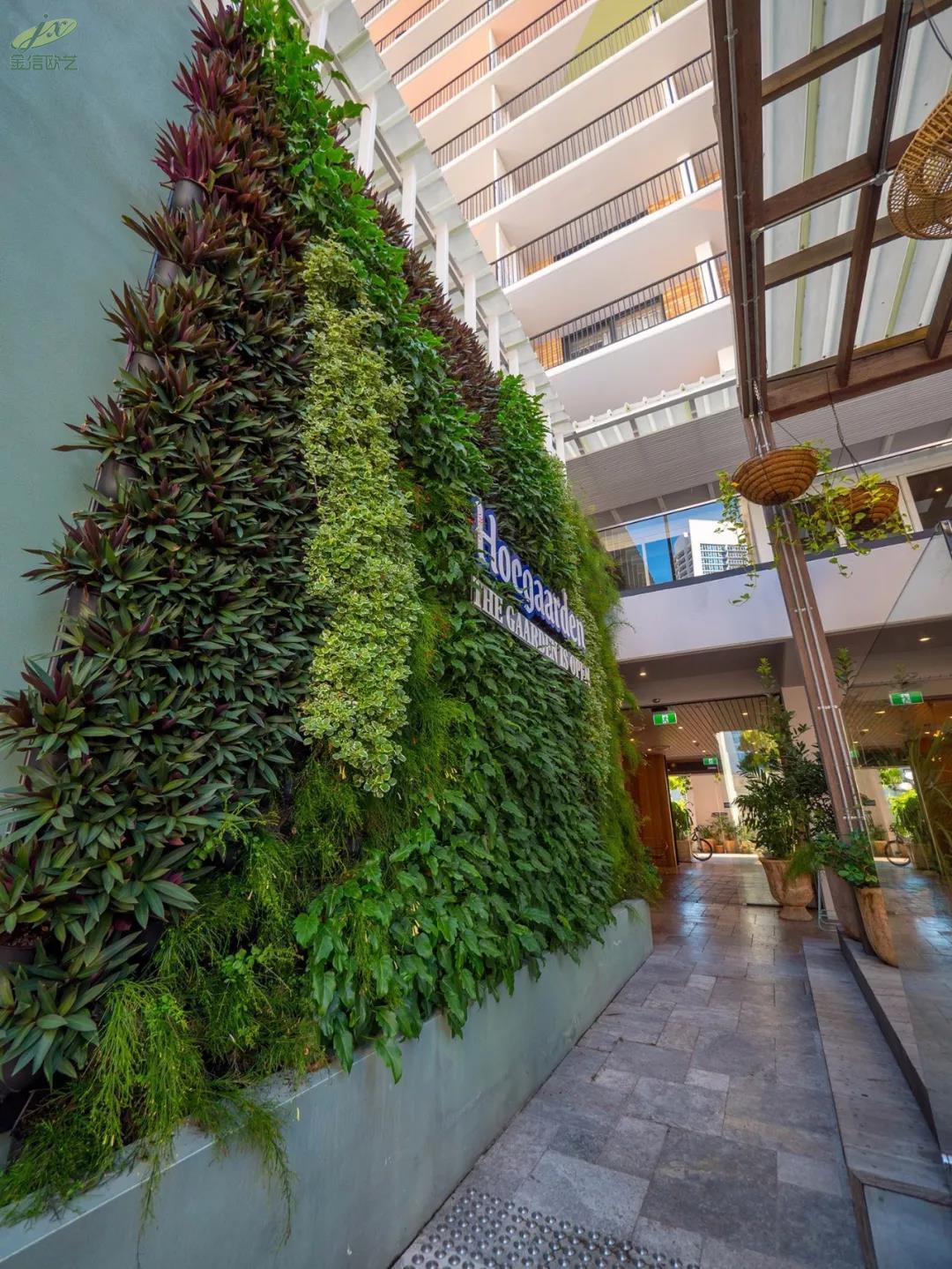 北京绿植墙