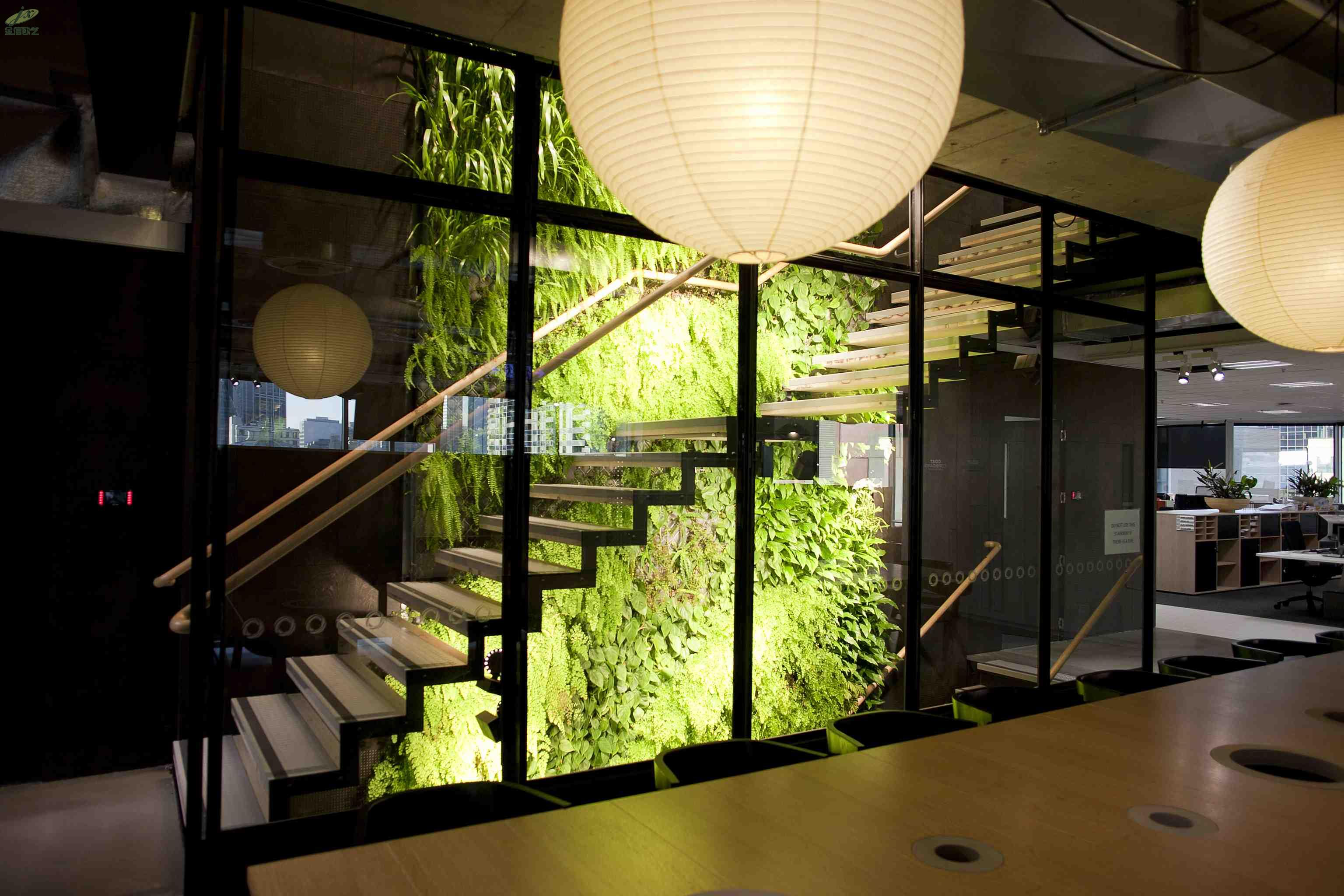 very-attractive-design-green-wall-office-the-greenwall-company